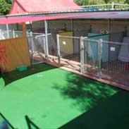 Paws Resort Kennel